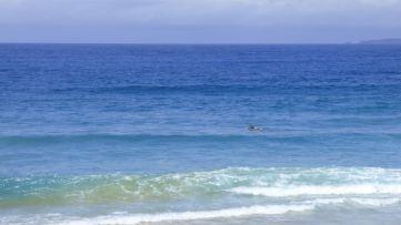 Seeking a wave