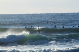 Mollymook Surf