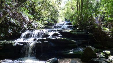 Leura Cascades