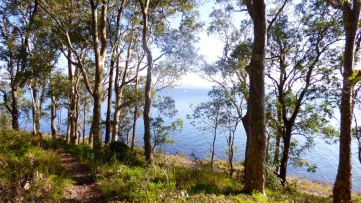 Walking path around the lake