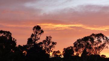 Sunrise. Photo taken just after 6:00 am