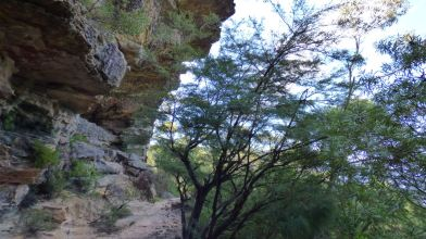 Track with Overhanging Cliff Face