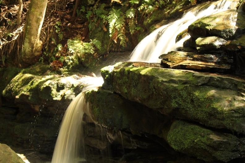 Water at Leura Cascades