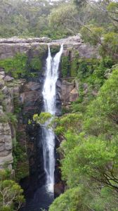 Carrington Falls