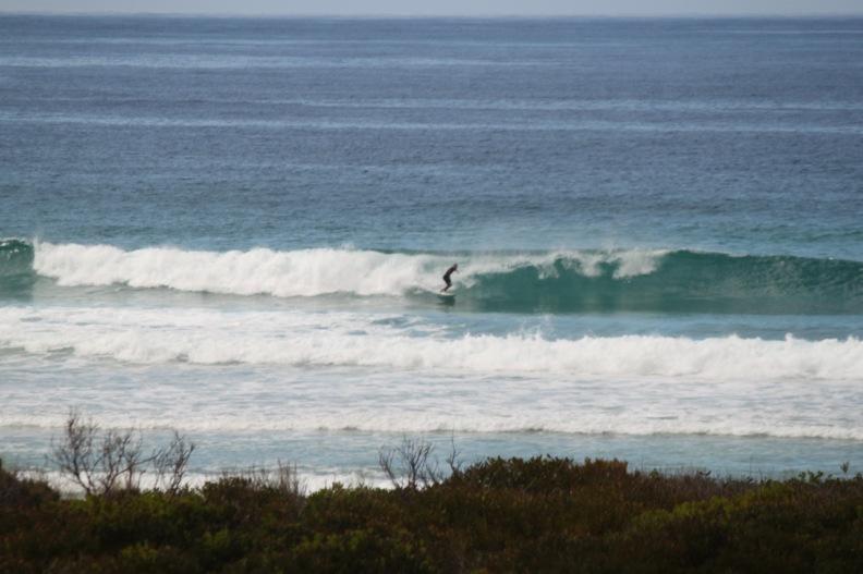 Surf in Tassie