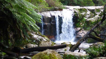 Halls Water Falls