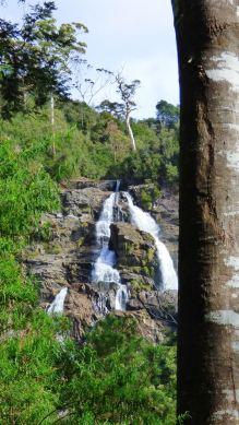 First glimpse of Saint Columba Falls