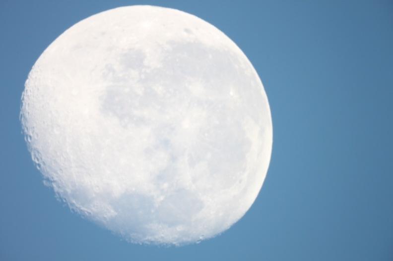 The AM Moon - Original