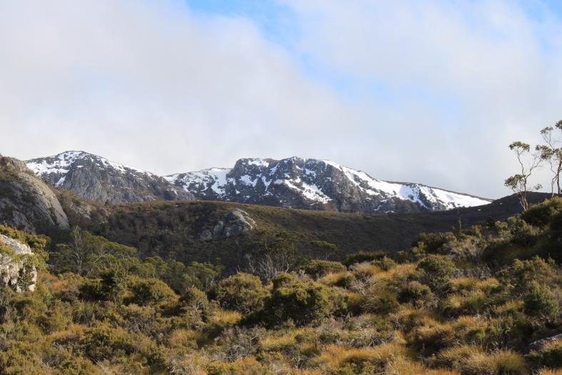 Those snow capped peaks.