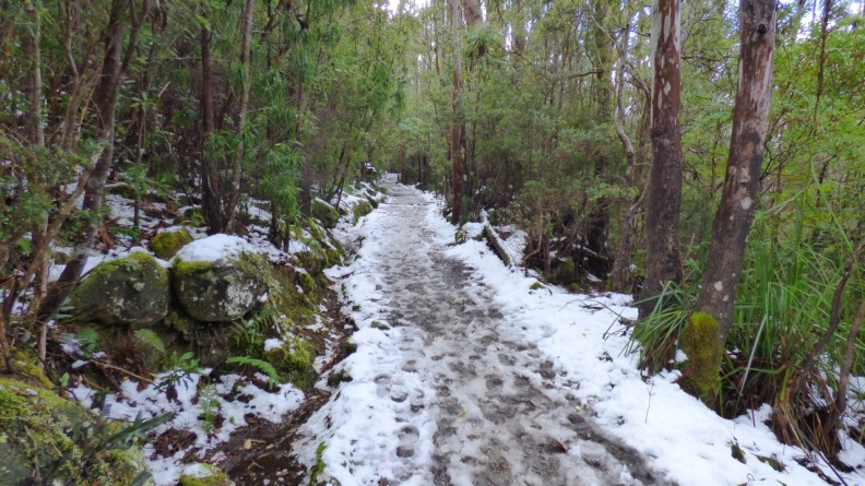 Snow Covered Track on Mount Wellington