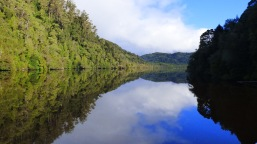 The beautiful reflection on the Gordon River on the way back into the harbour. From there we had to travel more than 40 kilometres (24.8 miles) to get back to Strahan.