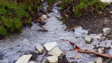 More frozen ground.