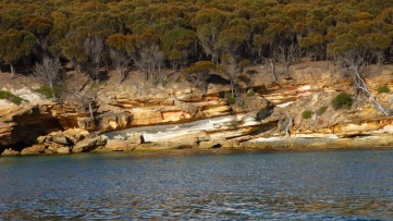 The Pained Cliffs