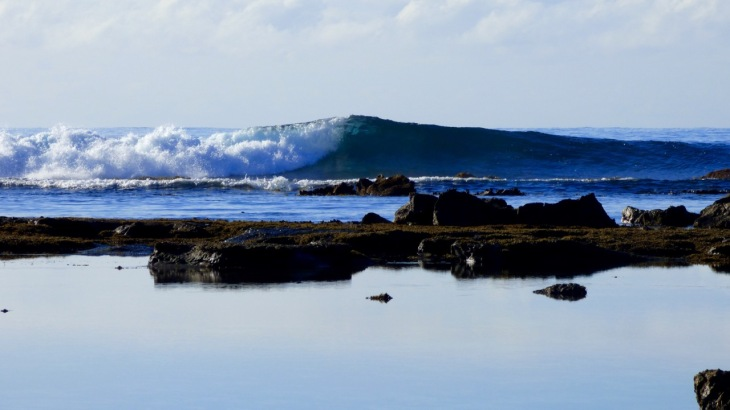 'Surfers Bliss' at Mollymook, New South Wales.
