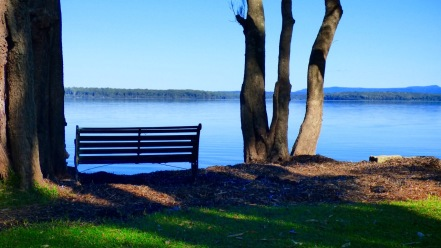 More than just a bench