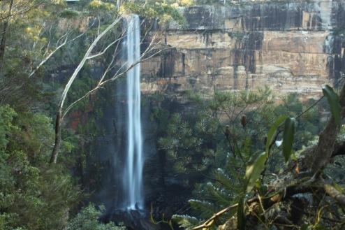 Fitzroy Falls