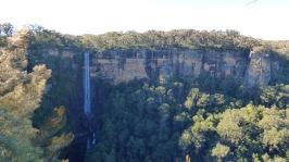 Fitzroy Falls again