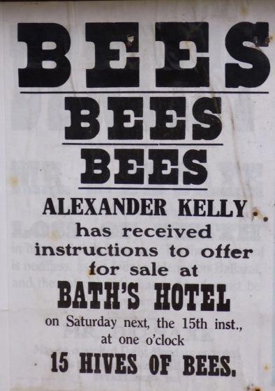 Bees anyone?