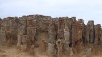 Called the Petrified Forest, but in fact a collection of hollow limestone tubes.