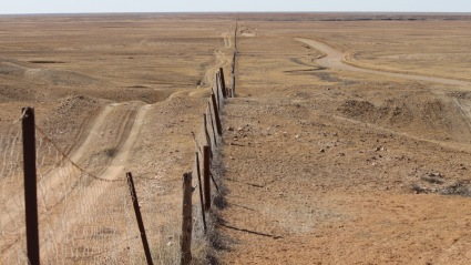 The Dingo Fence, the longest fence in the world and built to keep dingos out of the southern (fertile) areas of south eastern Australia.