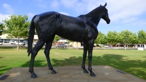 Makybe Diva overlooking Port Lincoln