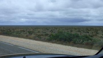 The vast treeless plain