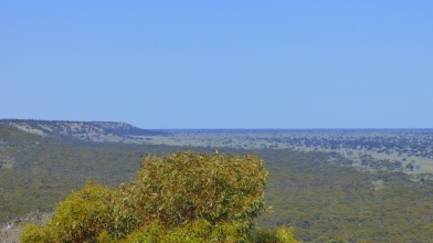 A view of the Roe Plains with the escarpment up to the Nullarbor Plain visible on the left.