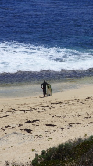 Finally found him, back on the beach