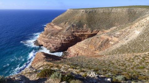 Shell Cove
