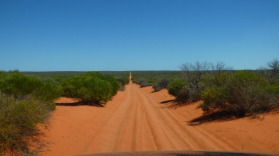 More of the long red road