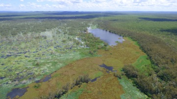 East Alligator River flood plain