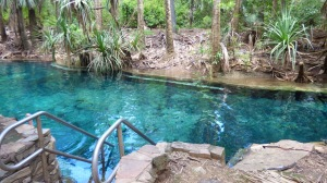 Rainbow Springs Thermal Pool