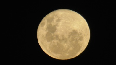 I love the colour of the full Moon on March 26