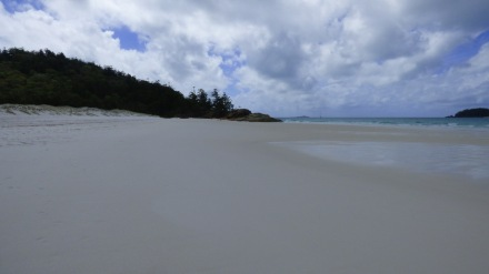 Whitehaven Beach, not looking so white