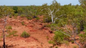 Barron Land - Western Australia