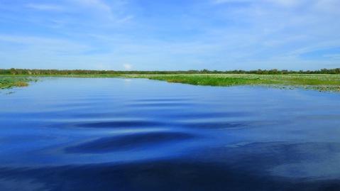 Yellow Water Billabong - Northern Territory
