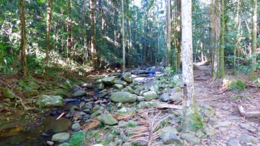 Creek tot he left, track to the right