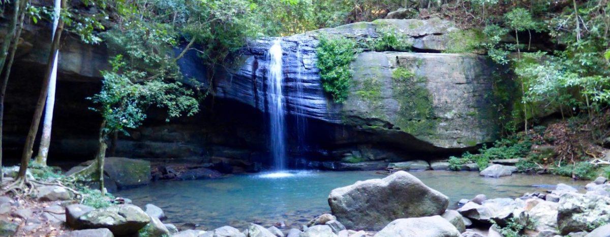 Visiting Buderim Falls