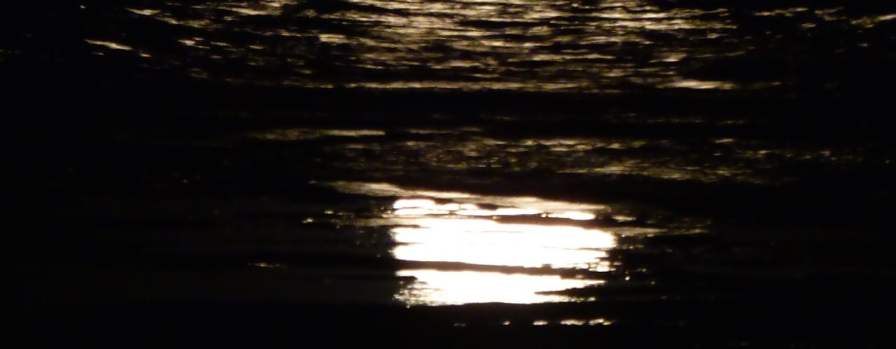 Moonbeam Reflections