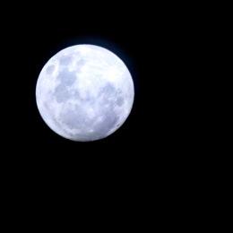 Not a Blue Moon