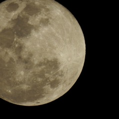 This photo was taken two nights ago whe nt he Moon was one day past full.