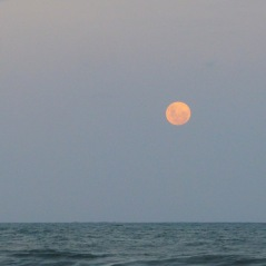 Not a Bad Moon on the rise